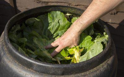 Compost Tumblers vs. Compost Bins