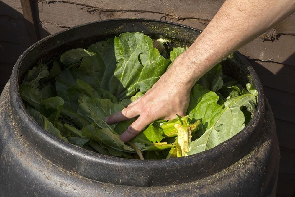 Compost Tumblers vs Compost Bins